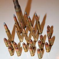 Ammo-02-25percent